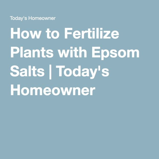 How to Fertilize Plants with Epsom Salts | Today's Homeowner