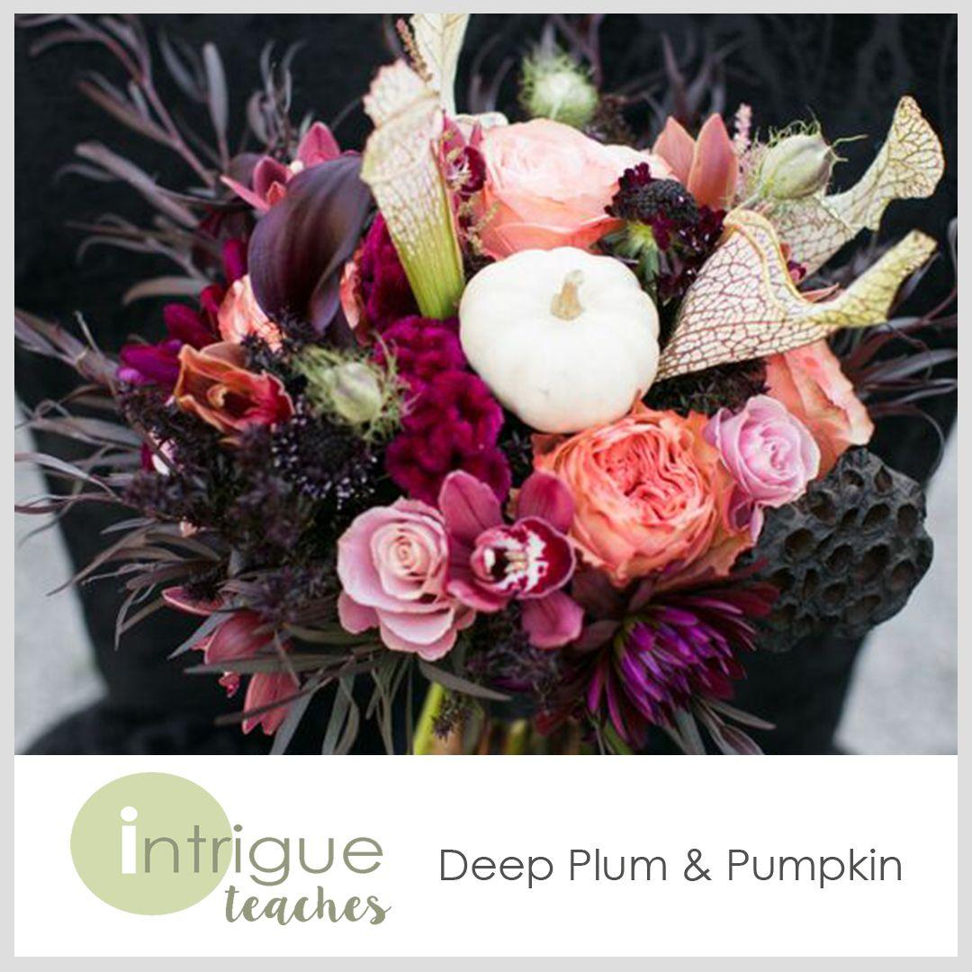 Deep Plum & Pumpkin #Intrigueteaches https://www.intrigueteaches.com/