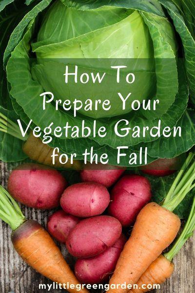 How To Prepare Your Vegetable Garden for the Fall #vegetablegardening #fallgardening #fallvegetables #autumngarden #gardenhacks #gardentips