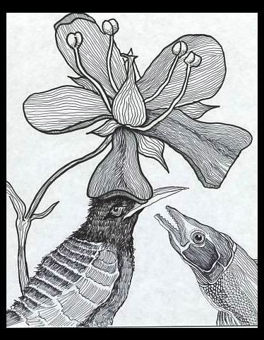 Bird and Fish - Pen, marker. Keywords: Animals, flowers, lines, whimsical, plants.