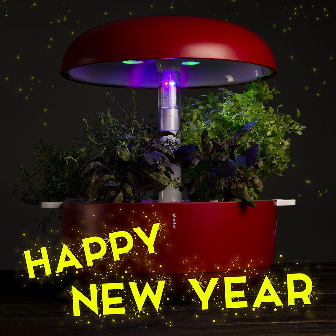 Happy New Year Smart Garden Indoor Garden Hydroponics 400 x 300