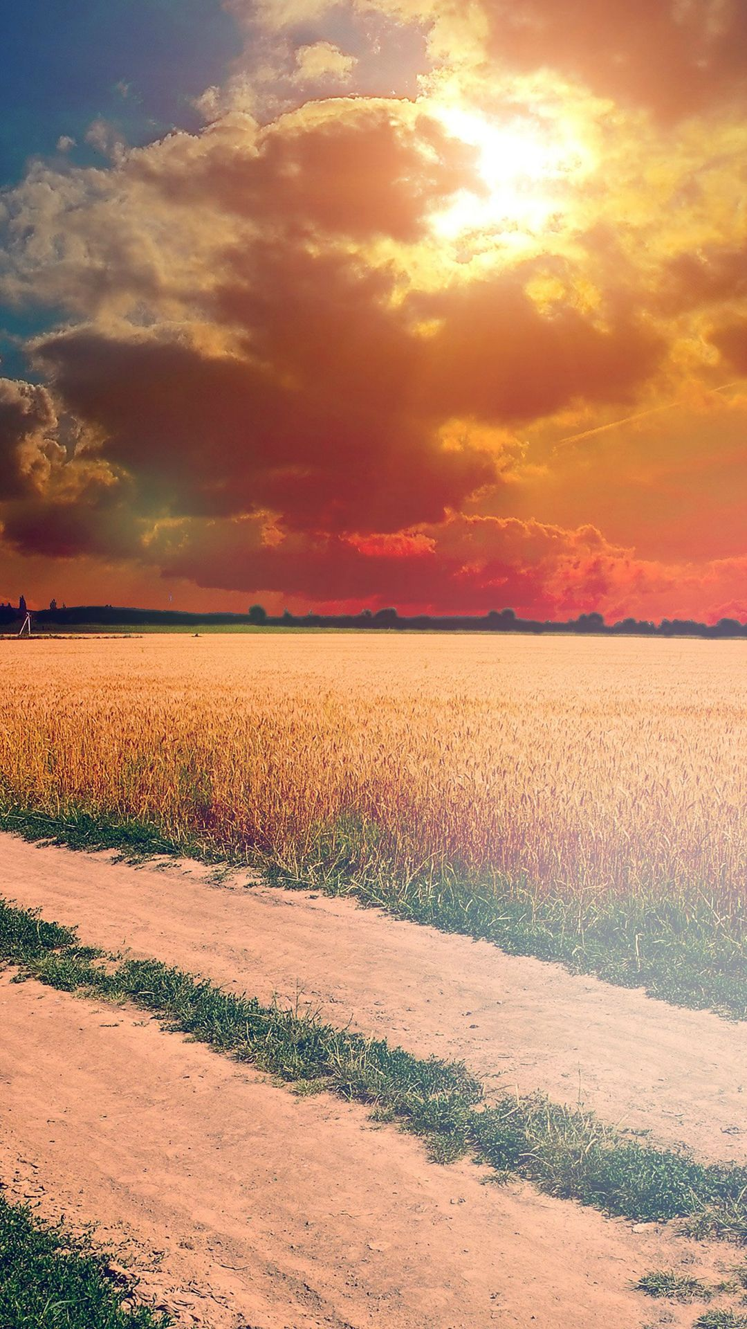 Hot Sunny Day Instagram Look Nature Farm IPhone 6 Plus Wallpaper
