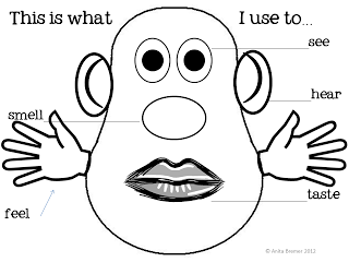 my five senses coloring pages five senses activity booklet by anita bremer