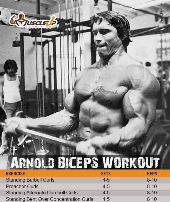 Arnold schwarzeneggers biceps workout httpsfacebook free report on how to gain rock solid muscle without the fat experience insanemens fitness mens workoutmens exerciseweight malvernweather Image collections