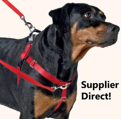 Freedom No Pull Dog Harness Special Order Direct From Supplier
