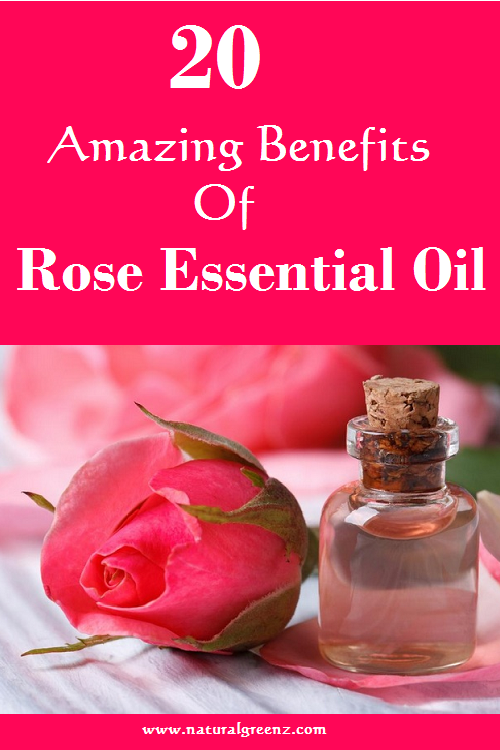 20 Benefits Of Rose Essential Oil Health And Fitness Tips Rose Essentials Rose Essential Oil