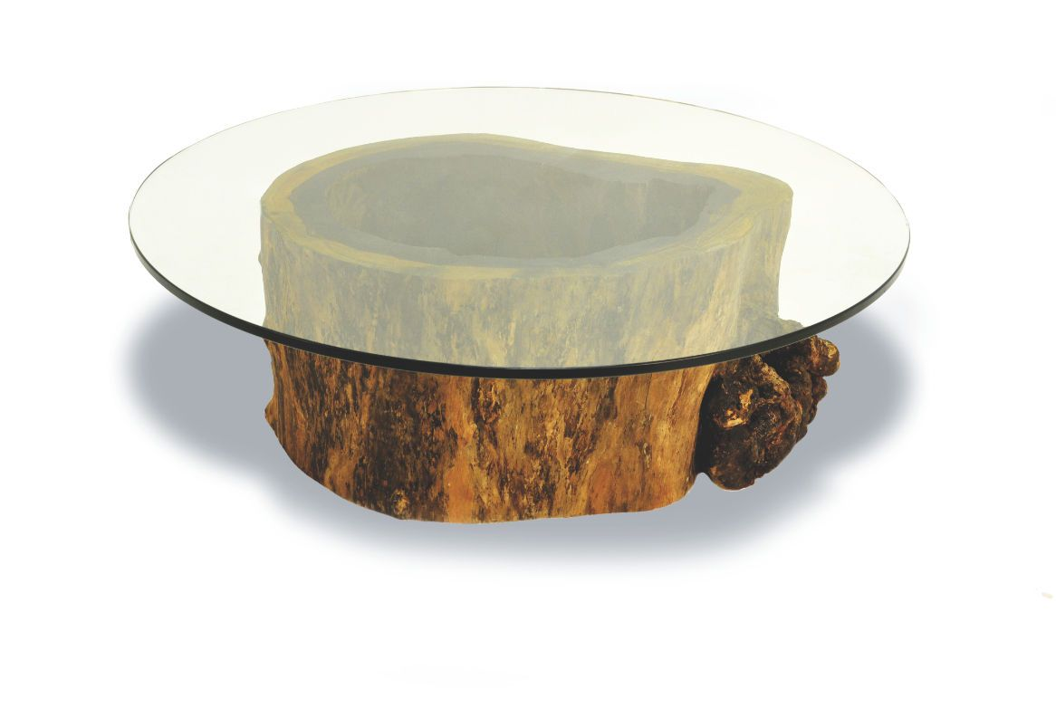 Coffee Table Contemporary In Wood Indoor Hollow Trunk Round Rotsen Furniture Tree Stump Coffee Table Stump Coffee Table Round Glass Coffee Table [ 782 x 1166 Pixel ]