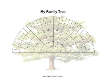6 generation fan family tree template printables pinterest