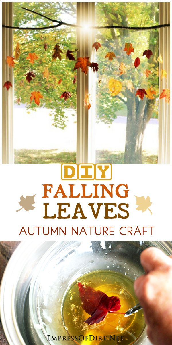 With this simple beeswax trick for preserving leaves, you can capture the beauty of autumn and create this beautiful hanging window art.
