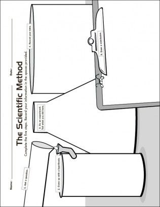 The Scientific Method Investigation Graphic Organizer For The