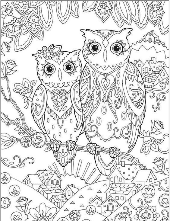Eulen3049852305823058230435 E1533657630677 Eulen Owl Animal Malvorlagen Ausmalbilder Coloring Ausmalbilder Eulen Ausmalbilder Ausmalen
