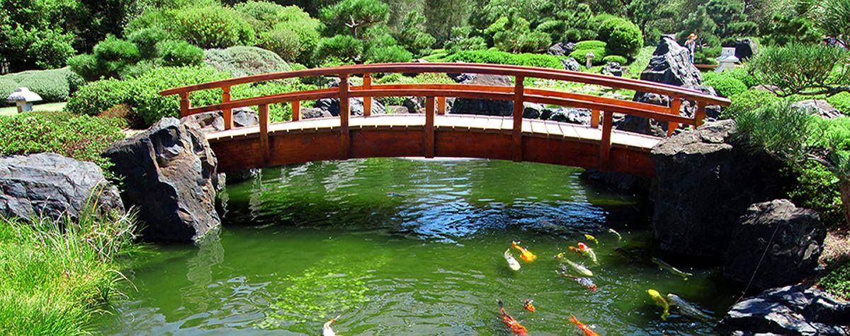 Japanese Gardens Koi Ponds   Google Search