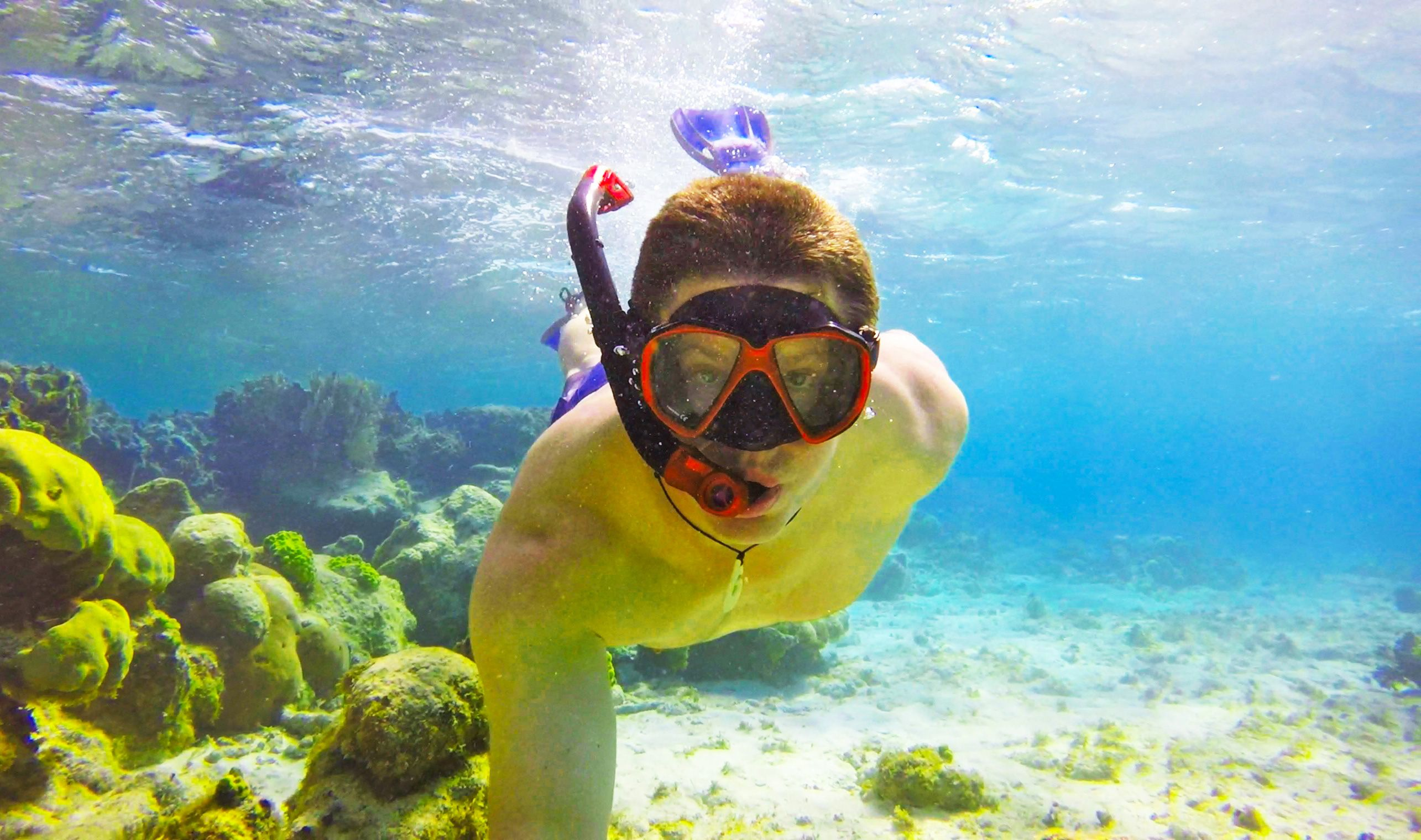 Best West Caicos Snorkeling Dive Spots Snorkeling, Best