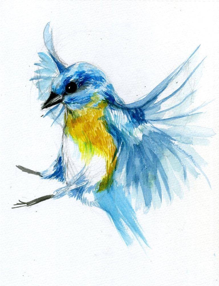 Blue Bird Watercolour Art Image Poster Gloss Print Laminated New Popart Watercolor Bird Tattoo Watercolor Bird Bird Sketch