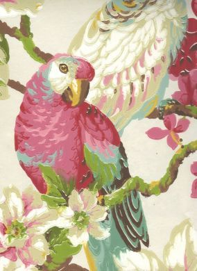 "Love this vintage parrot wallpaper for Maggie's ""old Florida"" bedroom"