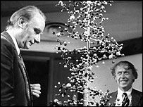 1953 Watson And Crick Used Cardboard And Wire To Make Models Of Dna Until They Came To The Double Helix Which Was Completely Accu Dna Activities Dna Dna Tree