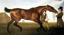 Hambletonian ; The Horses of George Stubbs