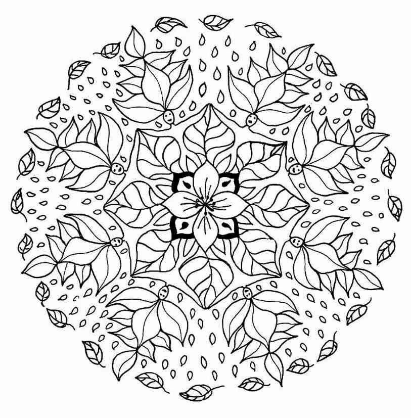 Coloring Pages Flowers Hard In 2020 Mandala Coloring Mandala