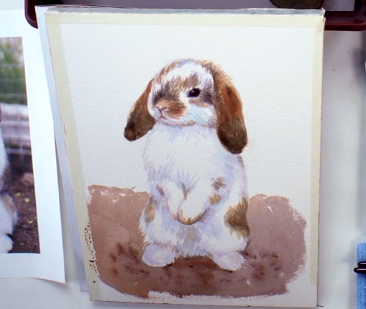 bunny-portrait-7