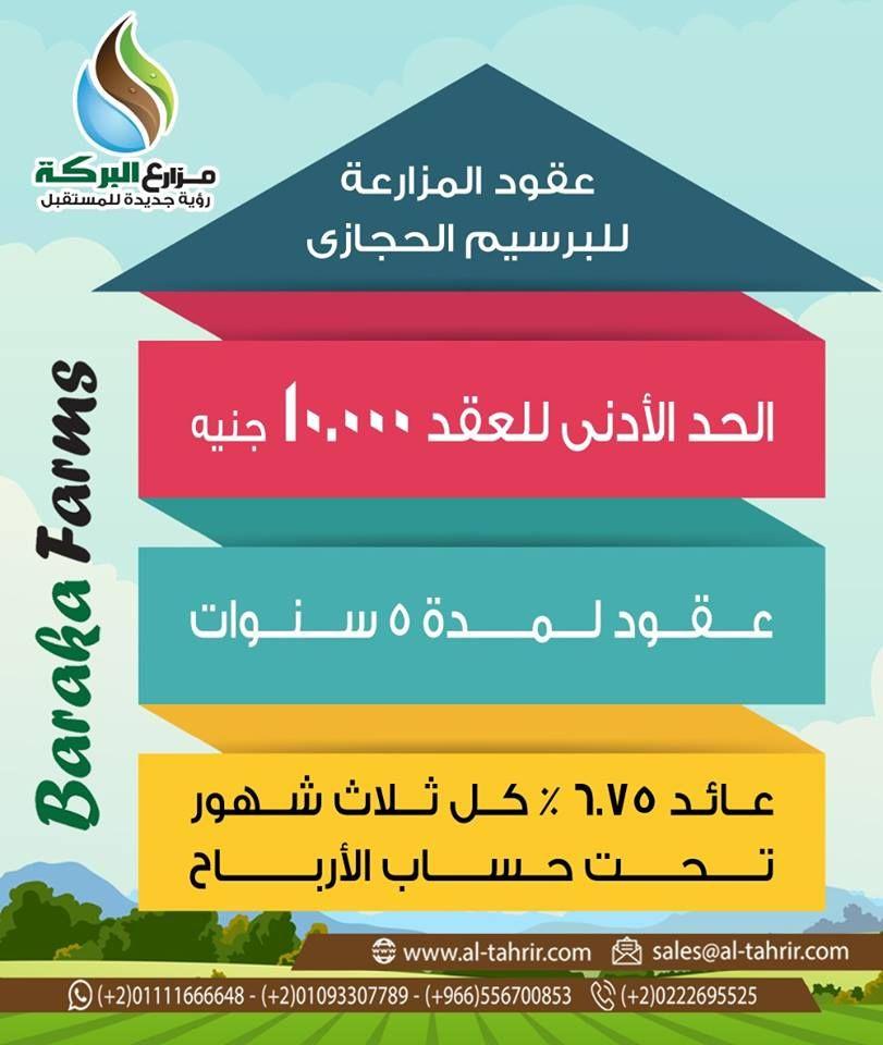 مزارع البركة عقود المزارعة للبرسيم الحجازى للحجز والاستعلام يرجى الاتصال جوال واتساب 002 01111666648 002 01093307789 002 0222695525 السعودي E Farm Farm Elis