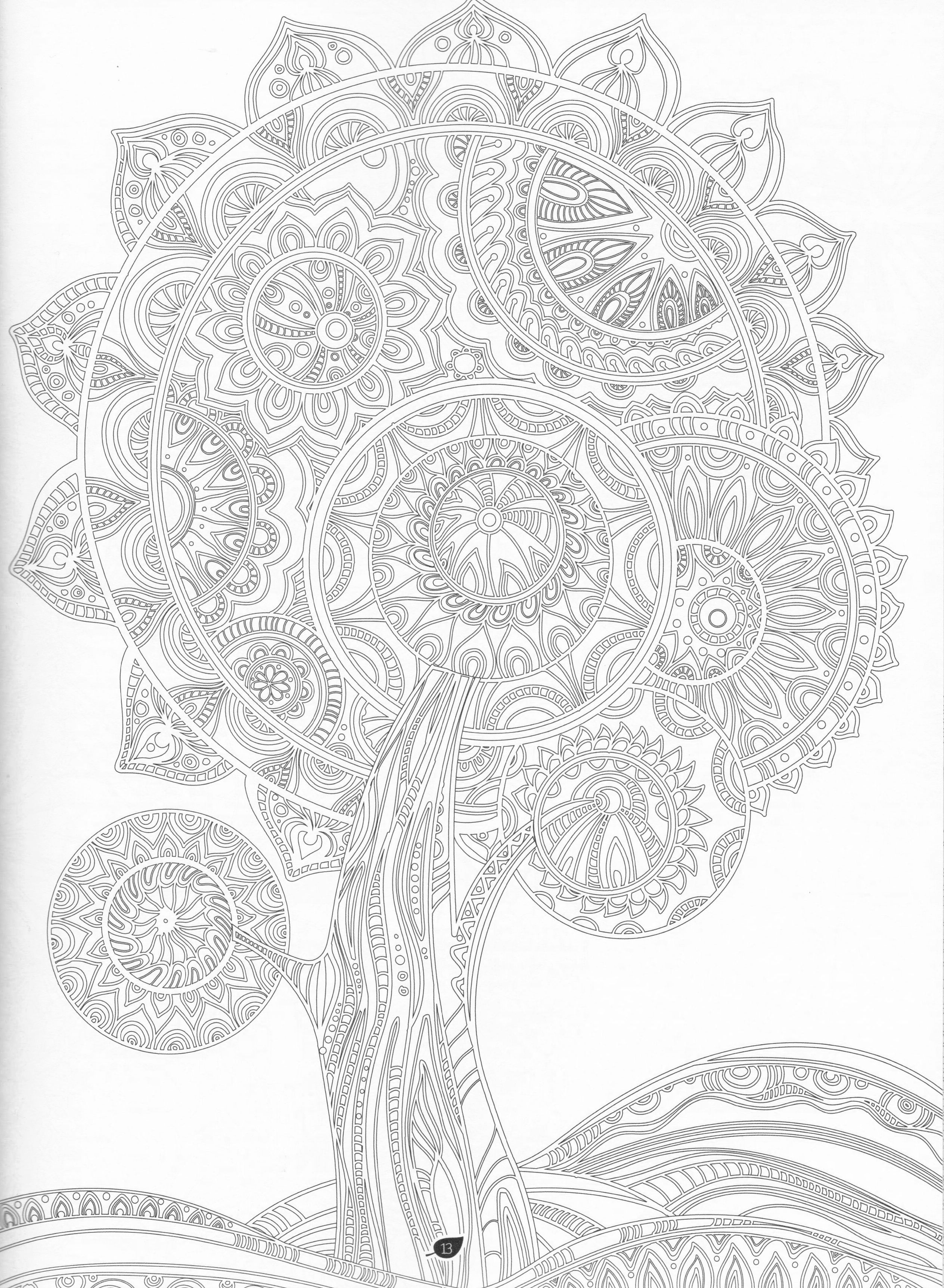 The Forest Adult Coloring Book Pg 6 | Color pages, Stencils ...