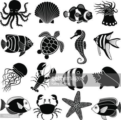 Ocean Creatures Art Sea Creatures Drawing Silhouette Art