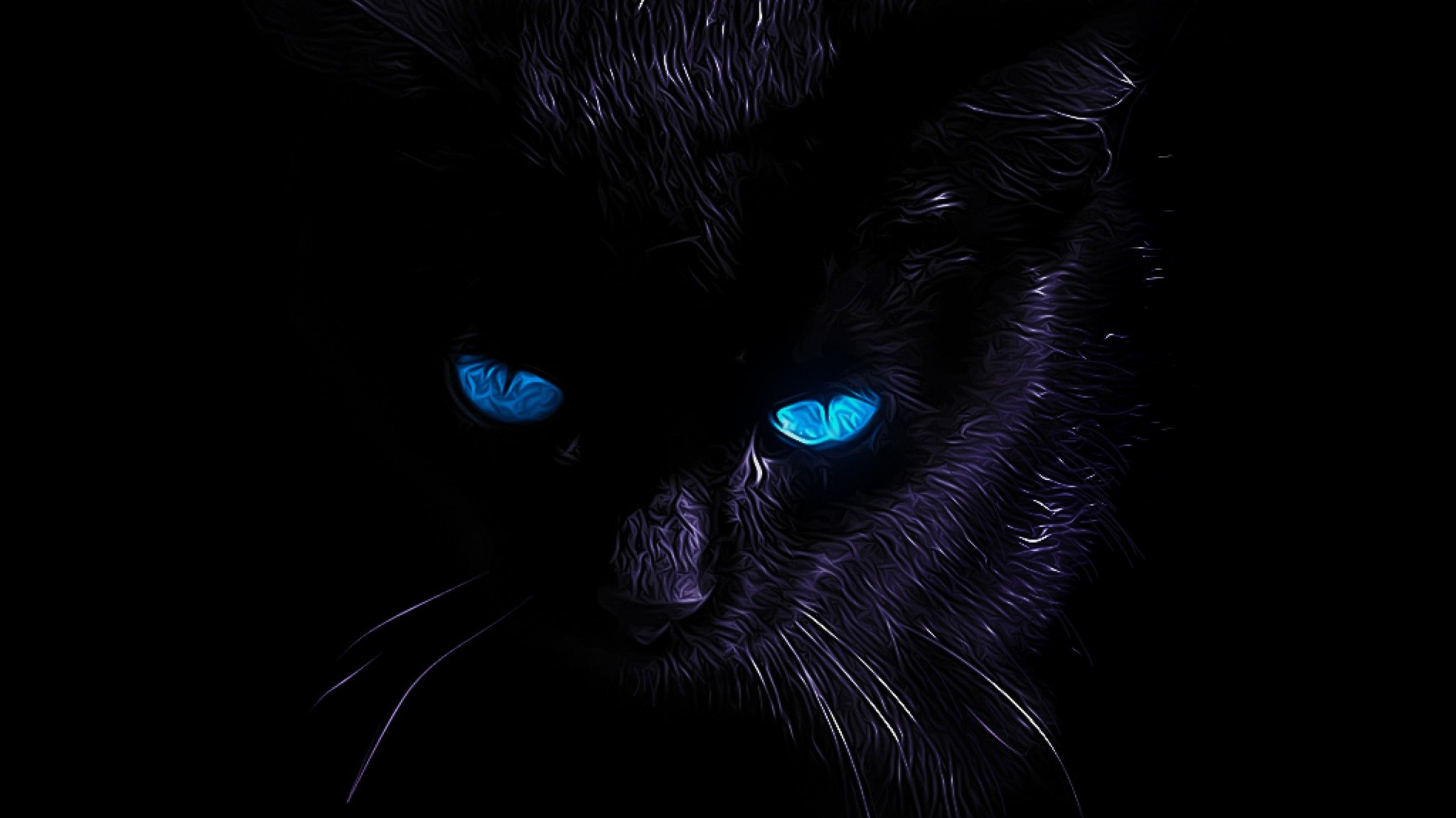 Black Cat Wallpaper HD Blue Eyes Awesome Wallpaper
