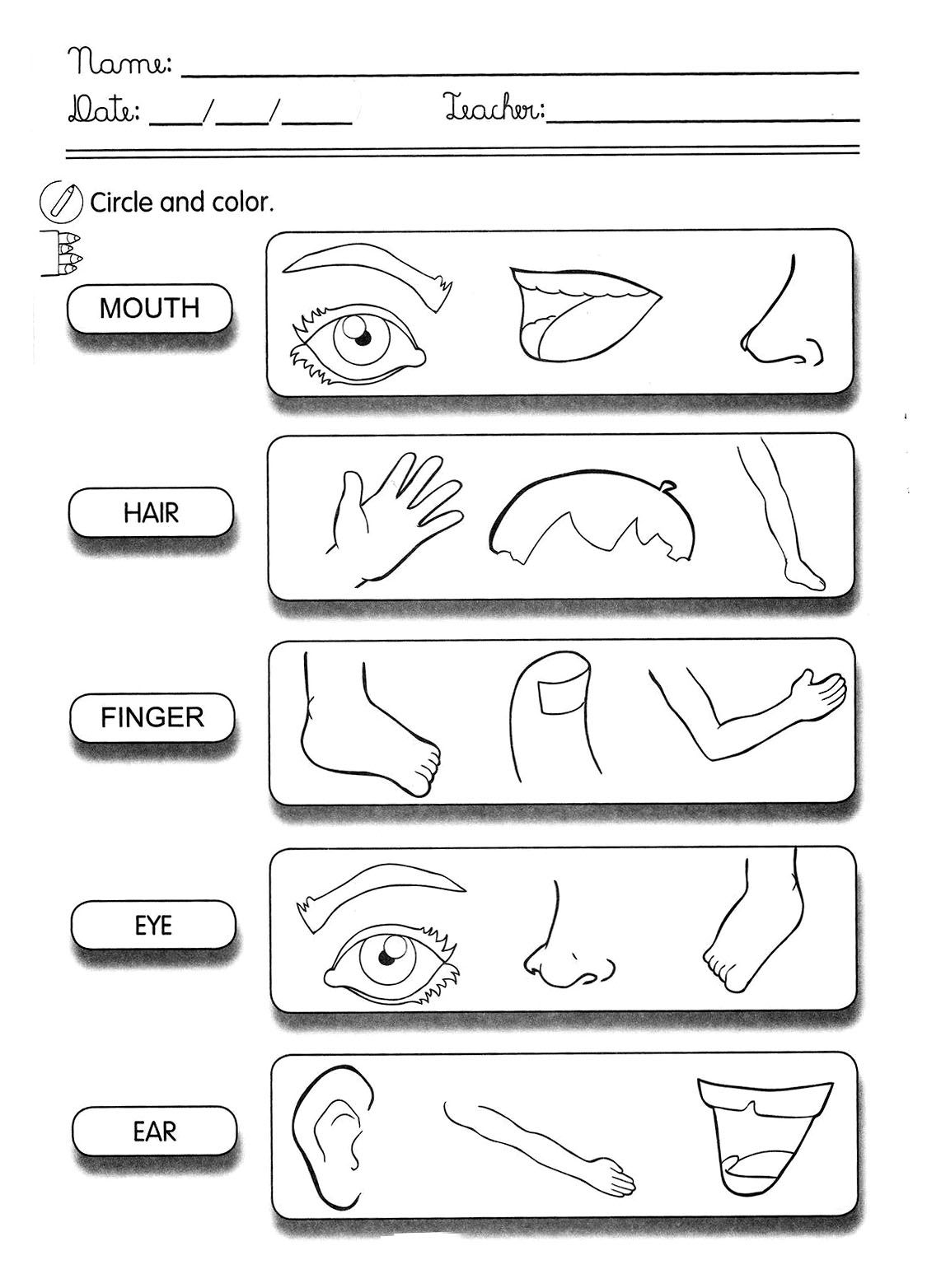Pin Em English Worksheets