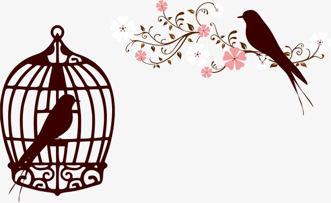 Millions Of Png Images Backgrounds And Vectors For Free Download Pngtree Bird Silhouette Islamic Artwork Bird Graphic