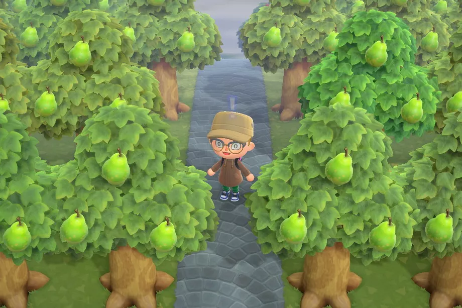 Animal Crossing New Horizons Fans Form Pear Gang To Fight Fruit Hatred Polygon Animal Crossing Animal Crossing Game Animals