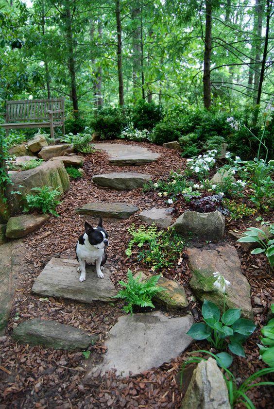 Oak-Shaded Landscape Gardening