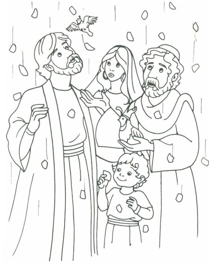 Manna Bread And Quail From Heaven Bible School Crafts Sunday School Coloring Pages Bible Coloring Pages