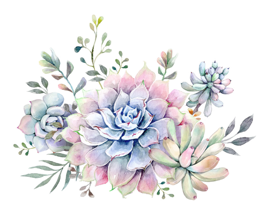 succulent watercolor hahaha pinterest watercolor  tattoo and paintings clip art borders and frames circles clip art borders and frames dogs