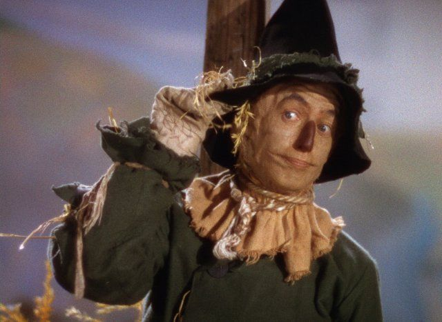Image result for scarecrow wizard of oz