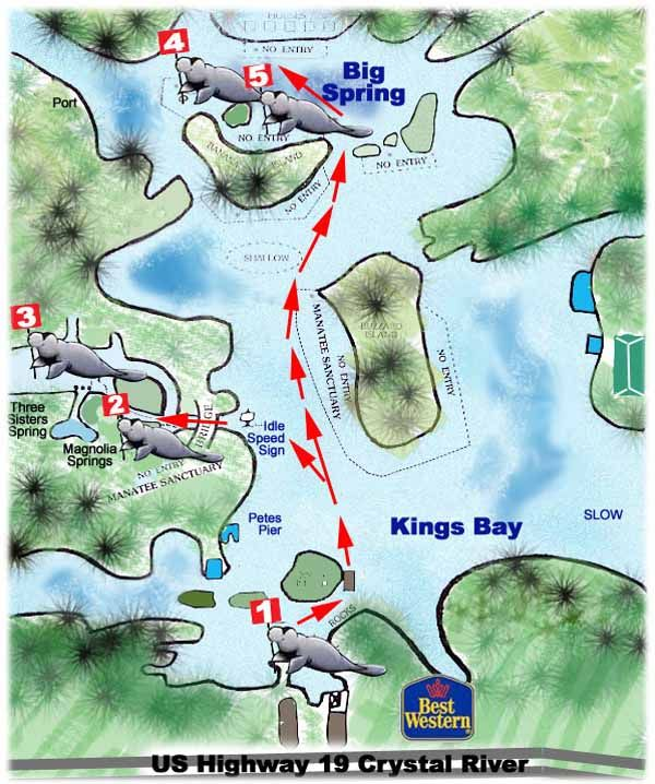 Three Sisters Springs Florida Map.Snorkel Dive Plan For Three Sisters Springs Crystal River Florida