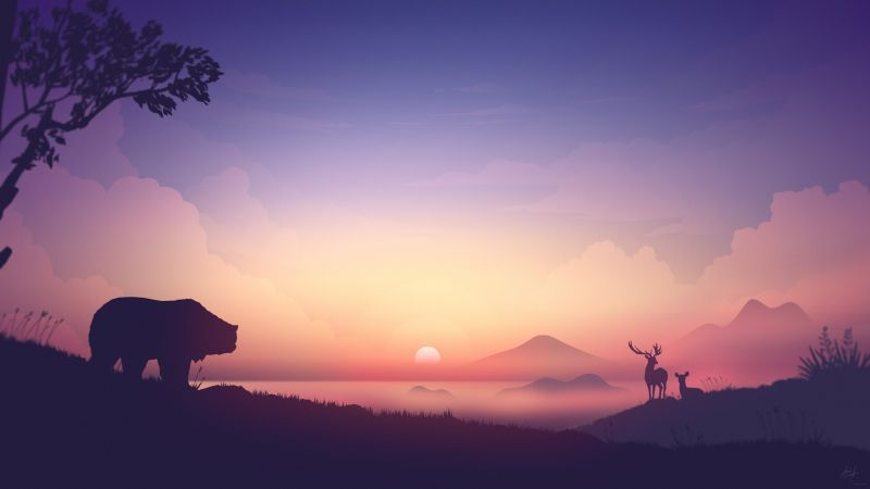 Sunset Bear Deer 8k Horizontal Sunrise Wallpaper Nature Wallpaper 8k Wallpaper