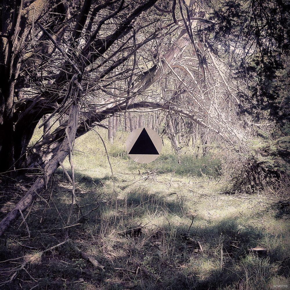 #landart #triangle #ufo #mystic #disc #circle #forest