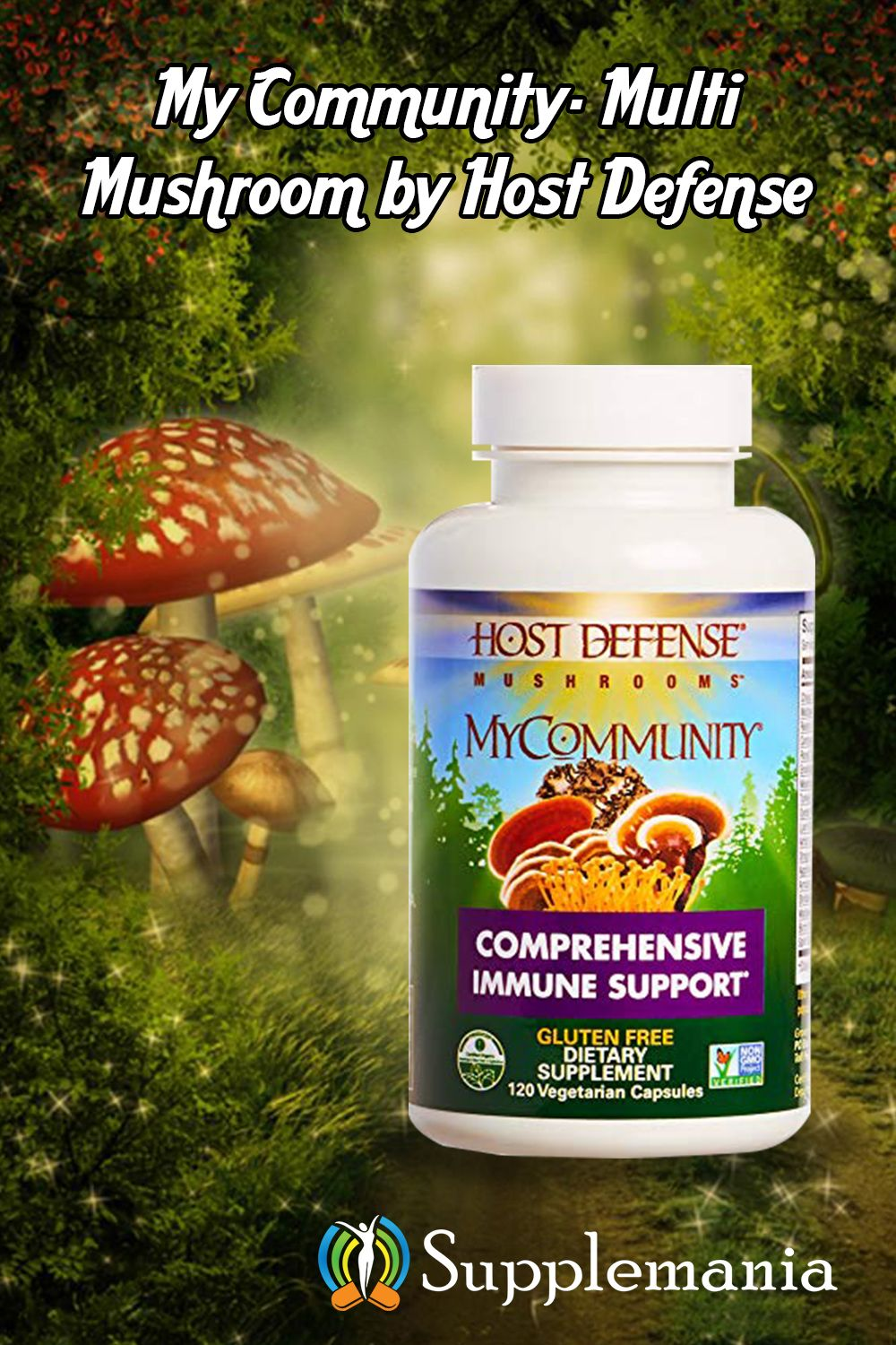 Best Mushroom Supplements (June 2019) – Top 12 Reviewed