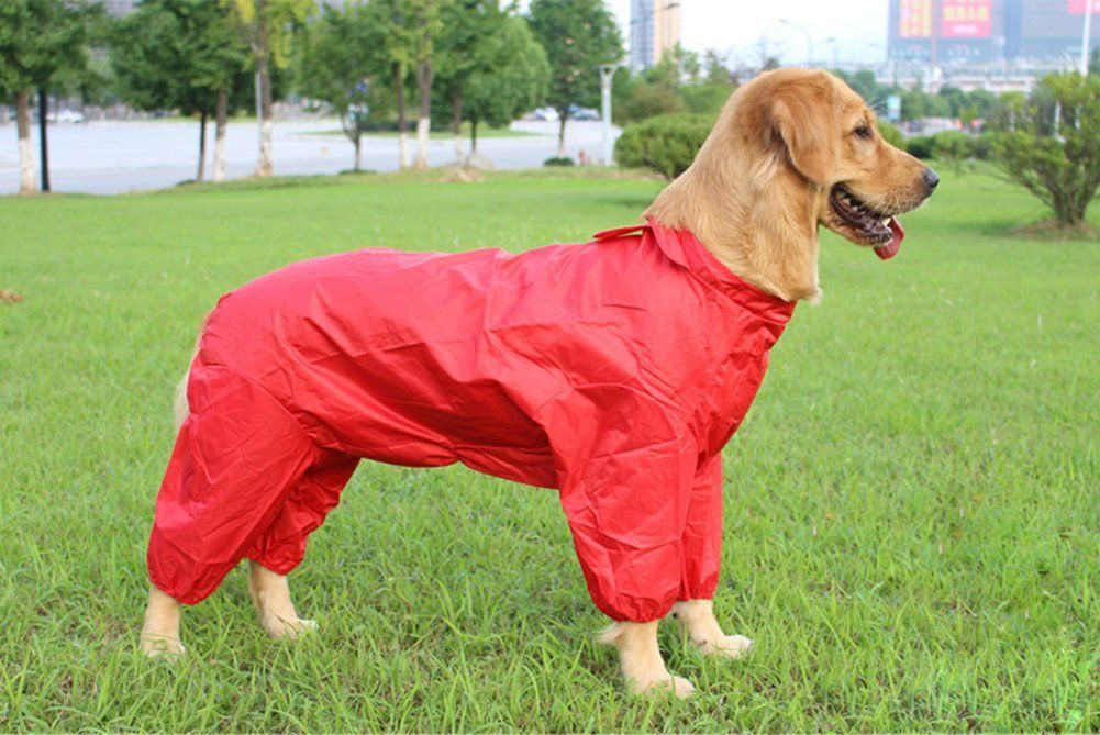 Four Legs Large Dog Raincoat