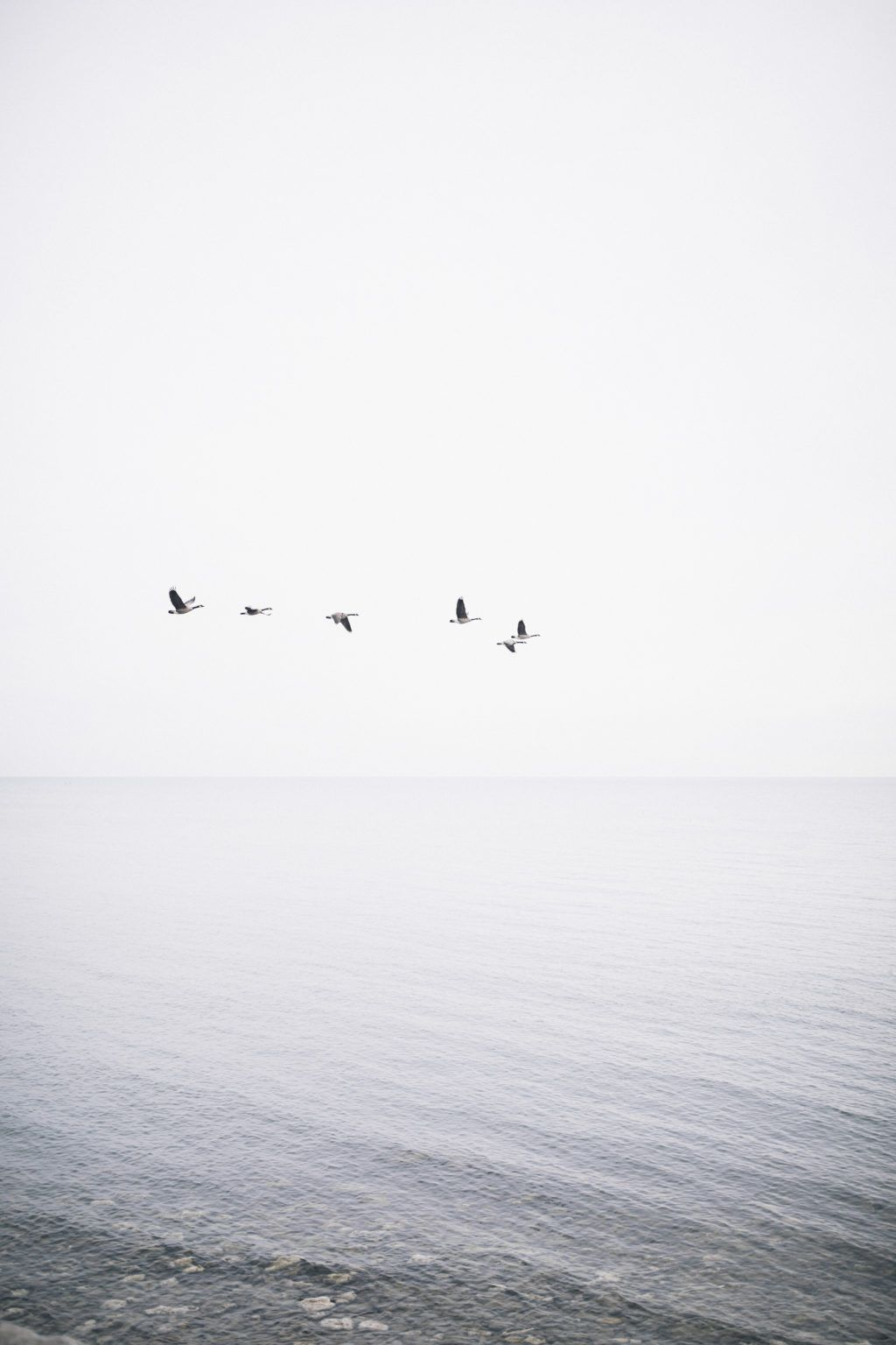 Highs And Lows Minimal Photography Black White Aesthetic Gray