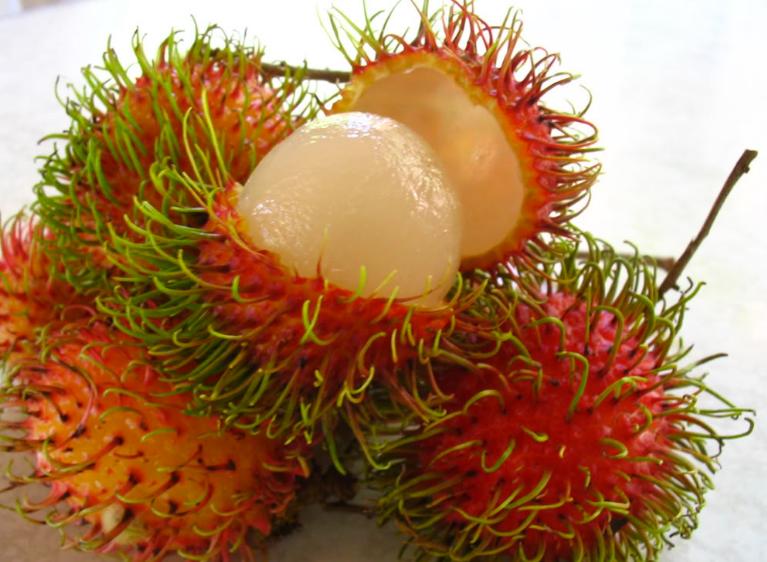 Passion Fruit بالعربي