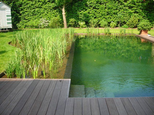 Zwemvijvers bing afbeeldingen schwimmteich pinterest natur pool garten en schwimmteich - Wasserteich im garten ...
