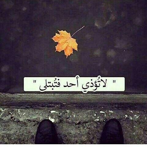 تنزيل اجمل الصور تحميل صور جميلة و رومانسية 2018 الوليد Photo Quotes Arabic Quotes Funny Quotes