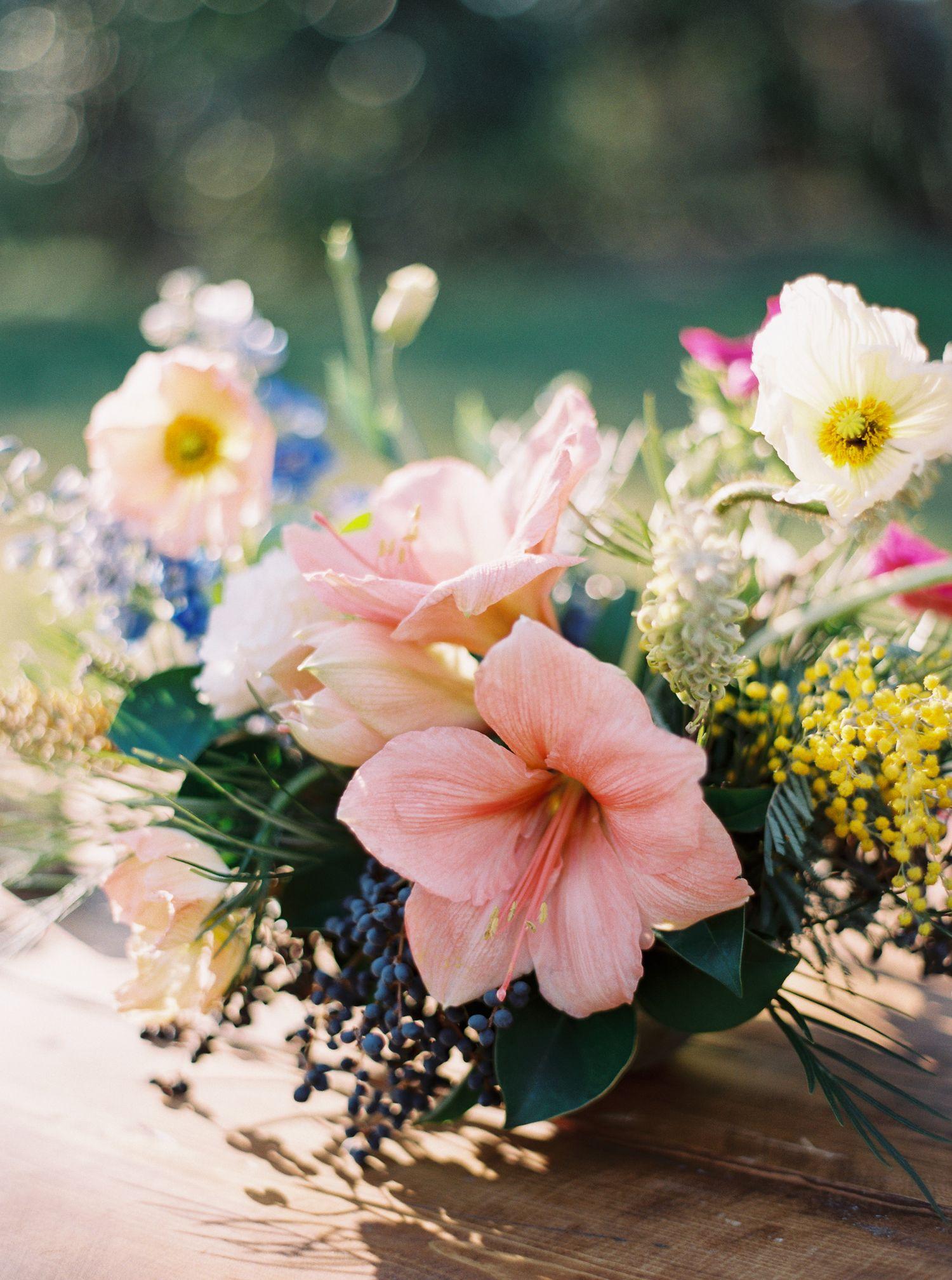 Floral Design Clementine Botanical Art Wedding Photos Pinterest