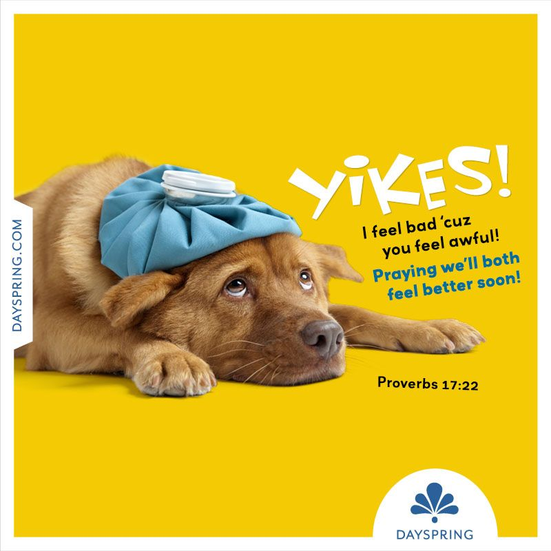 Ecards Dog sitters near me, Your pet, Pets