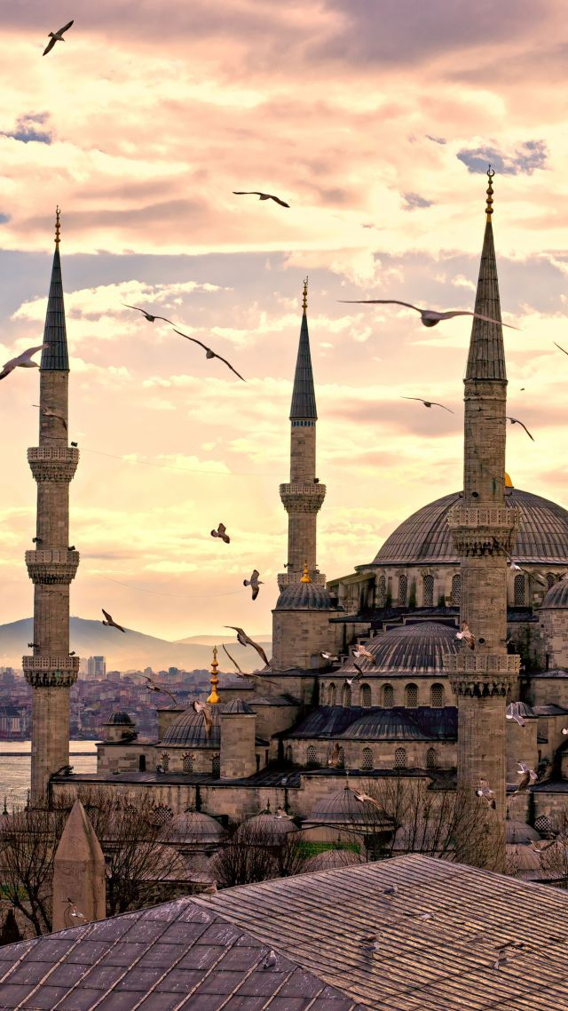 Wallpaper Sultan Ahmed Mosque, Istanbul, Turkey, Travel, Tourism, Architecture #4631