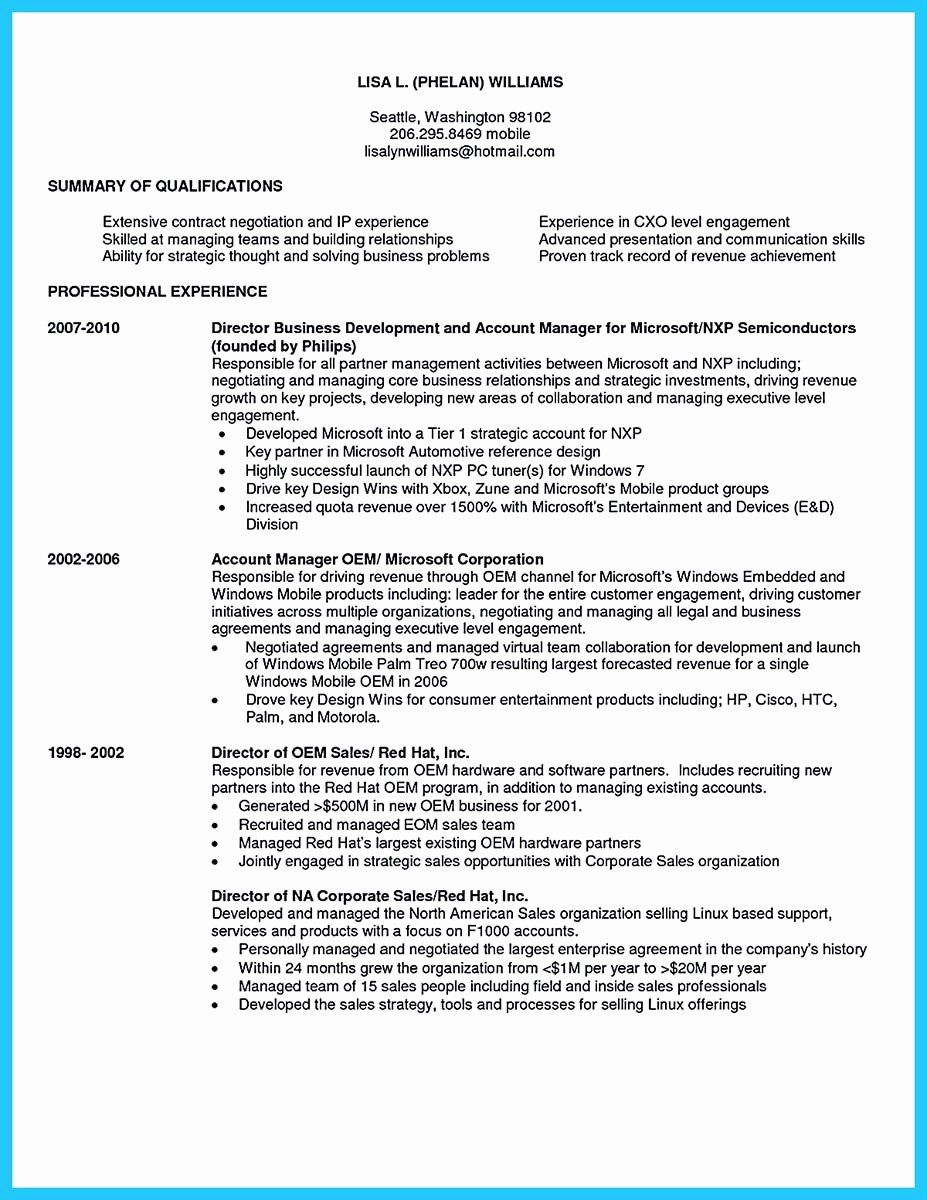 Business Development Executive Resume Unique Marvelous