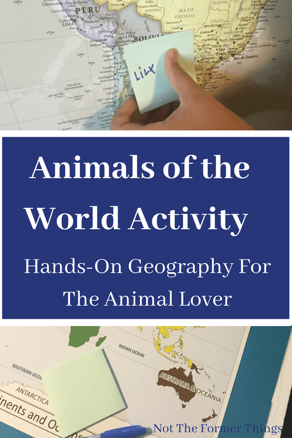 Animals Of The World Activity: Hands-On Geography For The