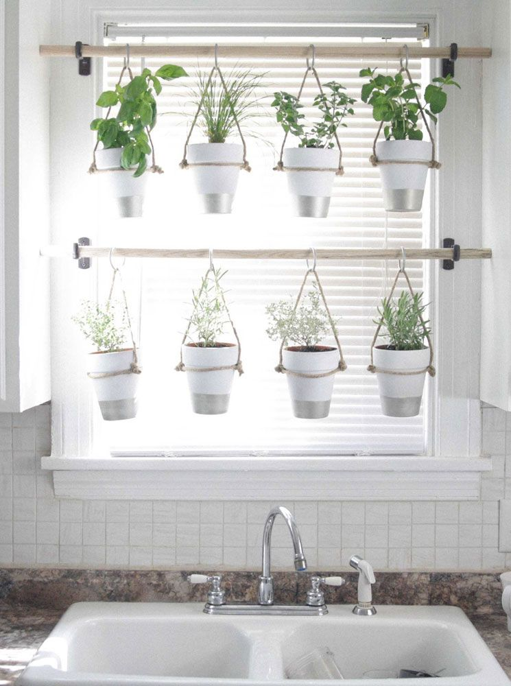 Lose The Drapes 15 Better Ways To Dress A Window Hanging Herb Garden Container Herb Garden Hanging Herbs