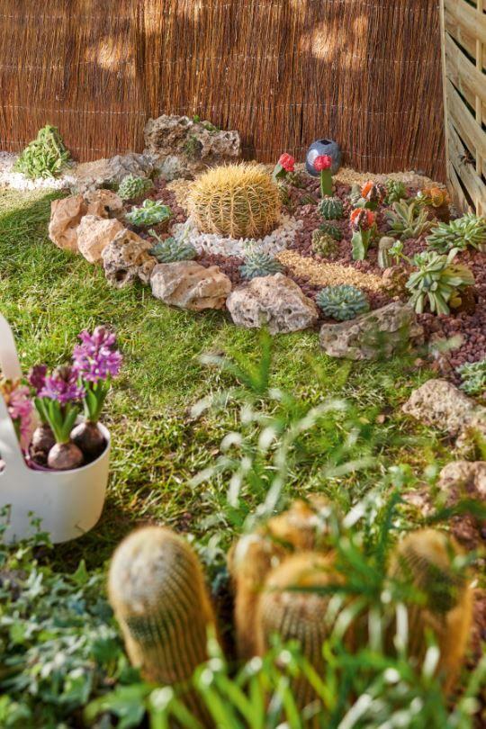 Te animas a hacerte paisajista prueba rodeando un cactus con piedras jardines y terrazas - Jardines con cactus y piedras ...